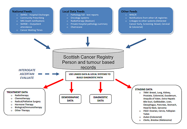 Cancer   Scottish Cancer Registry   How data are collected  Health